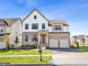 41369 Red Spruce