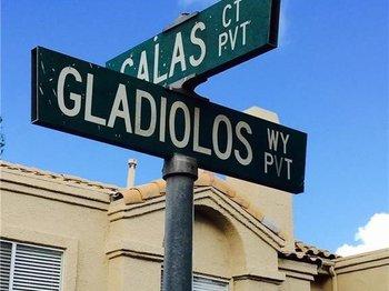 21184 Gladiolos Way