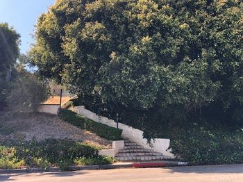 351 Catalina Drive