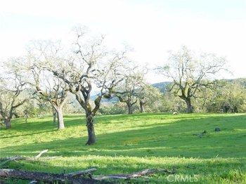 11610 Santa Rosa Creek