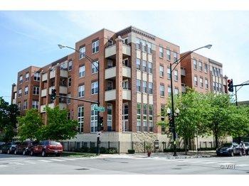 3550 West Montrose Avenue 103