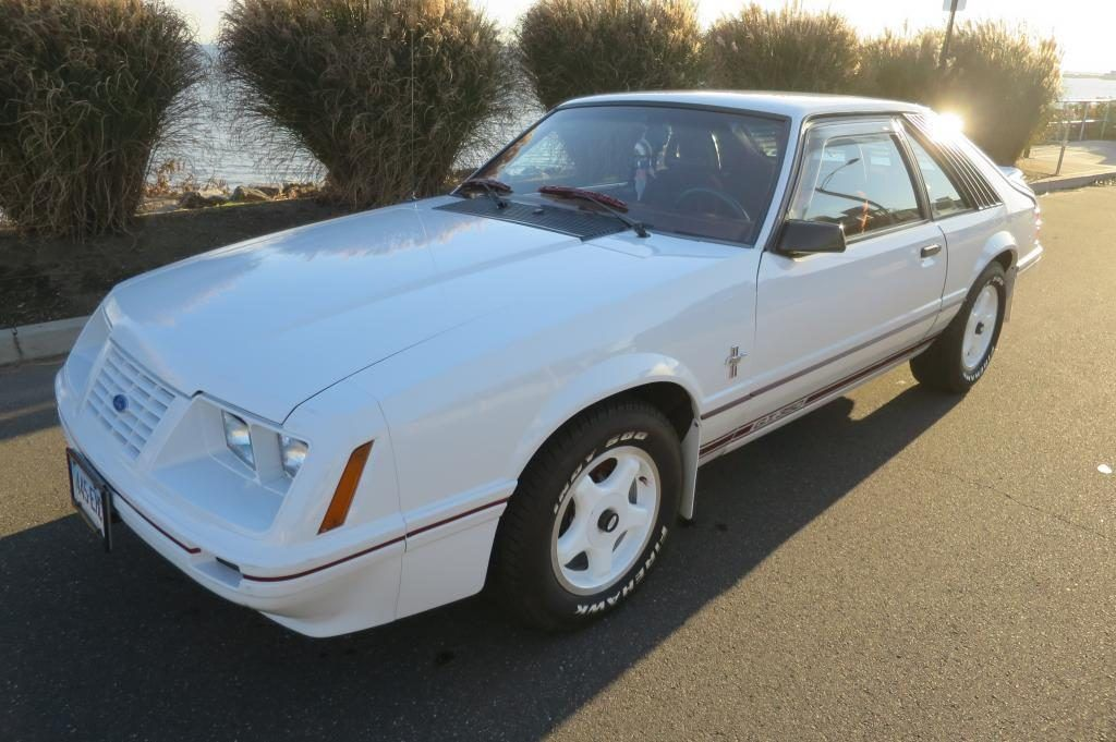 GREAT 1984 Ford Mustang