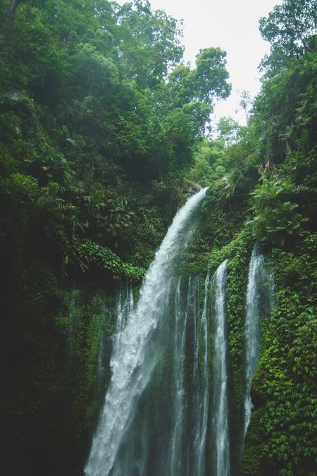 Travel to Bali on a Budget