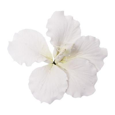 GUMPASTE FLOWER-HIBISCUS WHITE 11X11CM