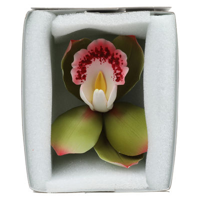 GUMPASTE FLOWER-CYMBIDIUM ORCHID GREEN 10X10CM