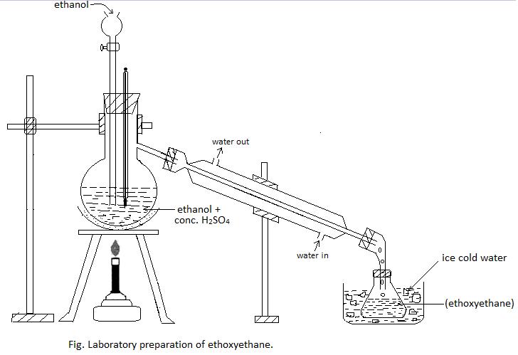 Laboratory preparation of diethyl ether