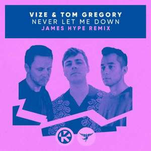 Never Let Me Down (James Hype Remix) -  VIZE, Tom Gregory, James Hype