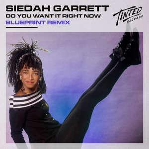 Do You Want It Right Now (BluePrint remix)  -  Siedah Garrett