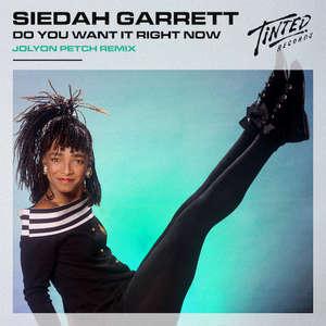 Do You Want It Right Now (Jolyon Petch Remix) -  Siedah Garrett