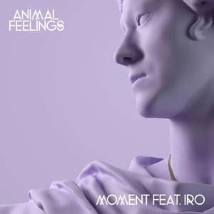 Moment  -  Animal Feelings & IRO
