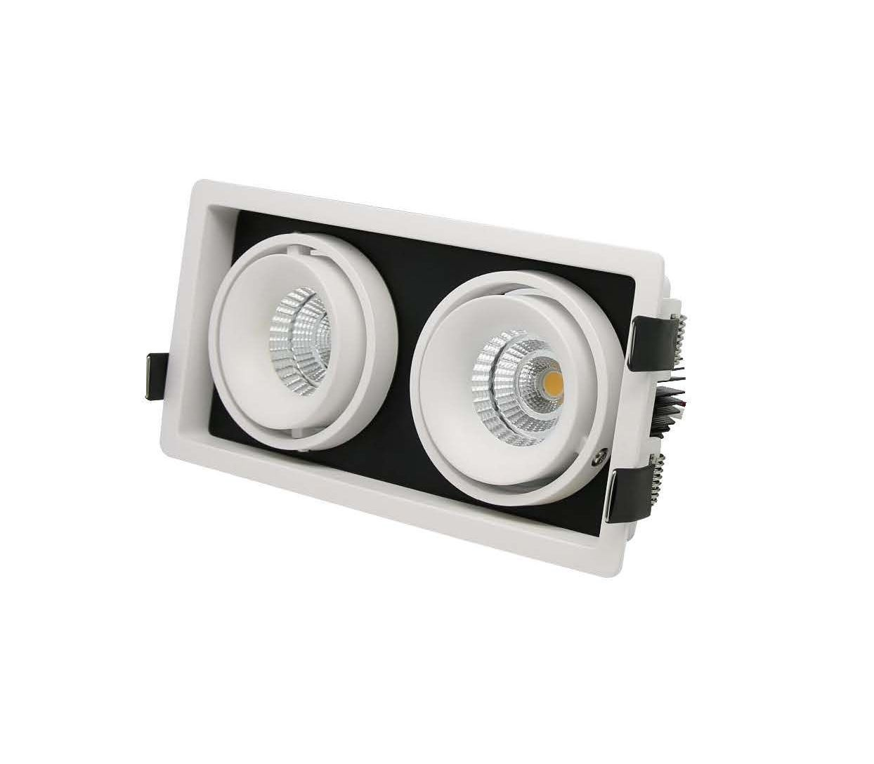 ARI 2 twin adjustable recessed downlight