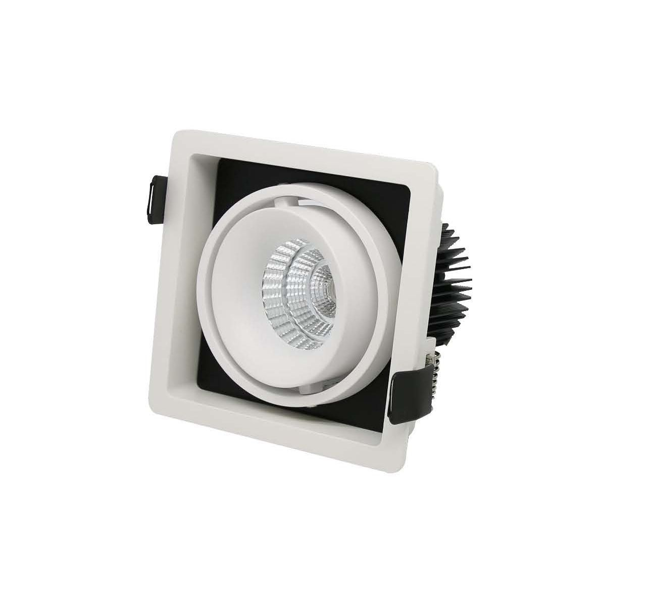 ARI recessed adjustable downlight