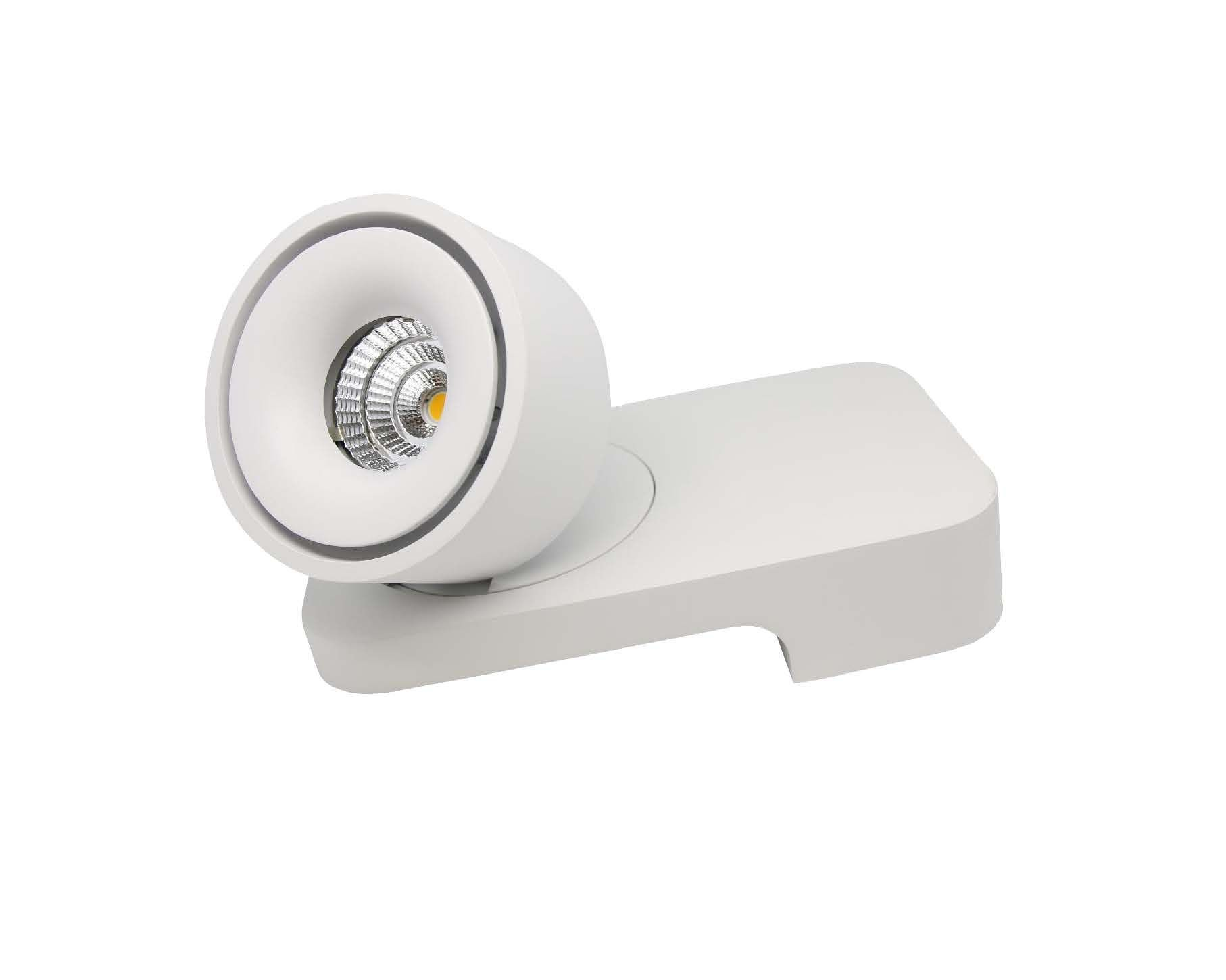 SMJT surface mount ceiling or wall light