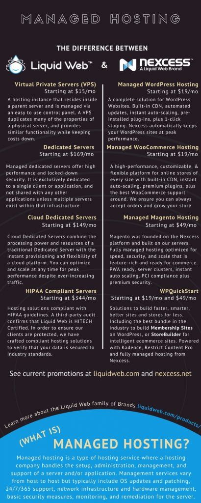 web hosting services infographic