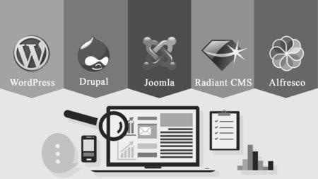 escolher cms para web design