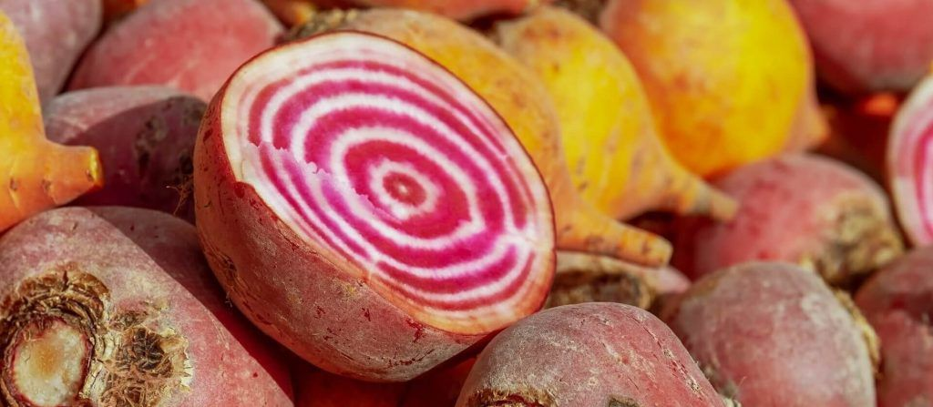 Cross section of colorful beets