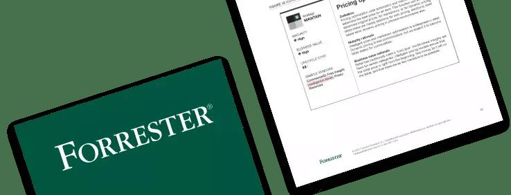 Forrestor Report 2021