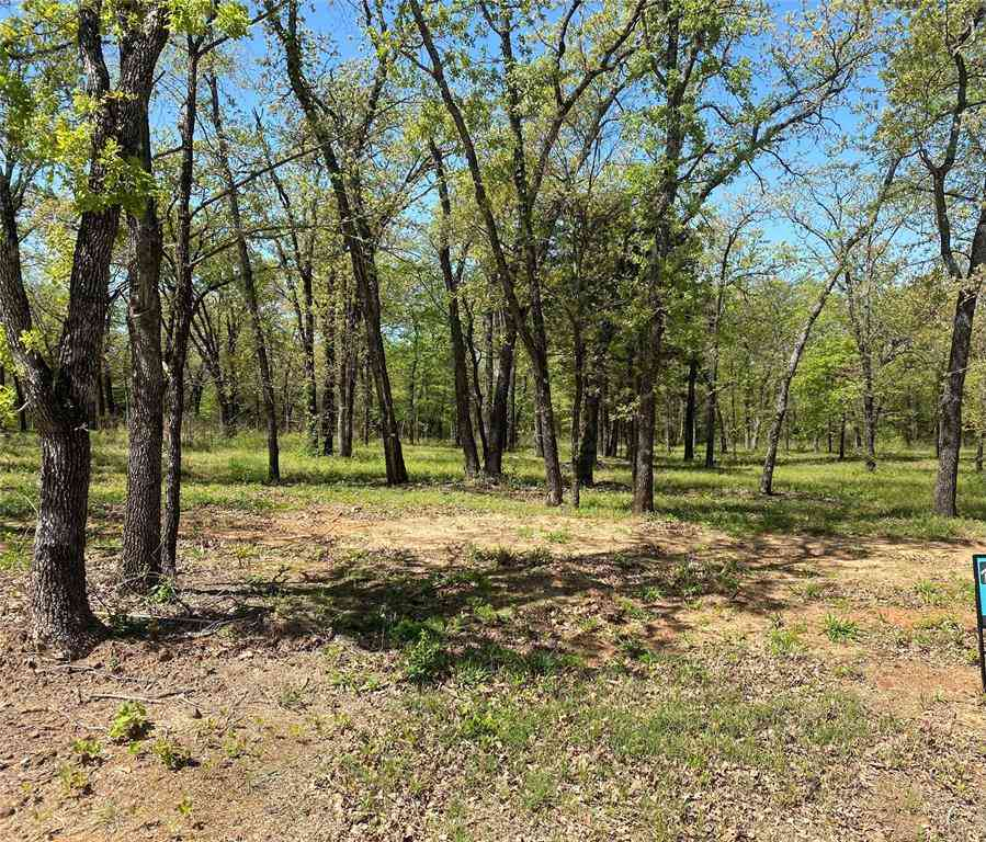 Lot 11 Knotted Oaks Court, Valley View, TX, 76272,