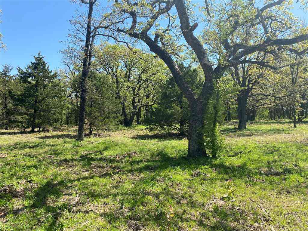 Lot 7 Knotted Oaks Court, Valley View, TX, 76272,