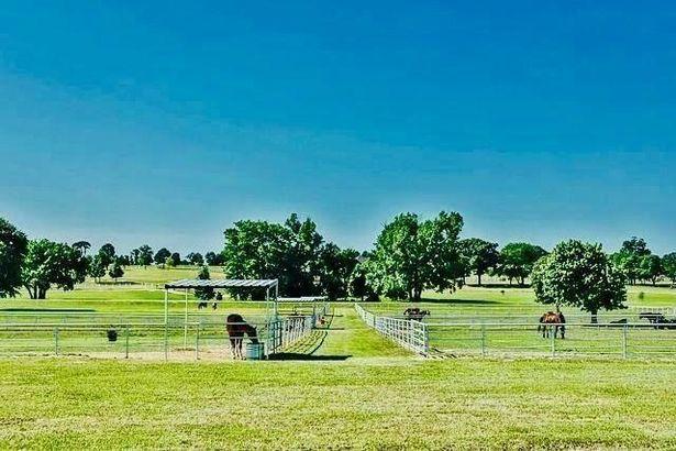 22821 Stallion Park Place