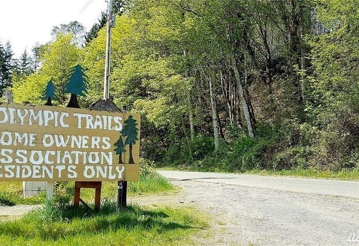 241 N Trail Head Loop