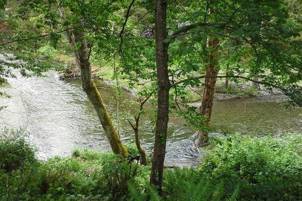41218 Upper Creek Rd