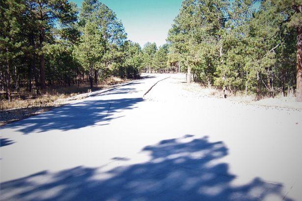 16305 Meridian Road