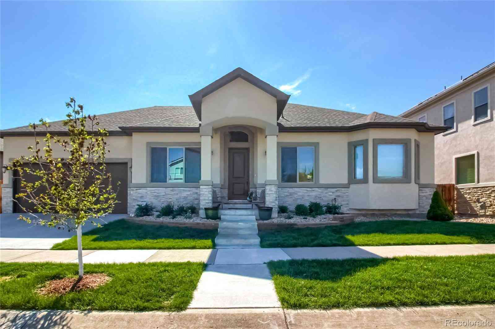 1131 S Balsam Court, Lakewood, CO, 80232,