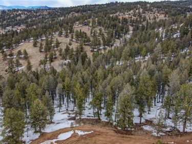 105 Carlton Circle, Florissant, CO, 80816,