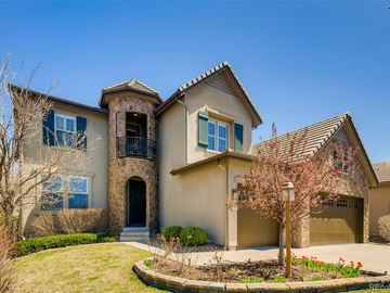 9650 Sunset Hill Circle, Lone Tree, CO, 80124,