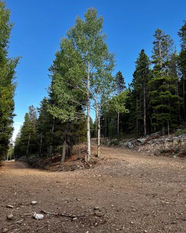 27348 Squaw Pass Road Evergreen, CO, 80439