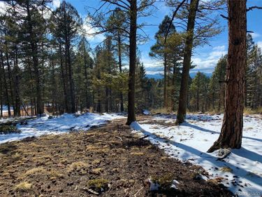 13 N Eldorado Circle, Florissant, CO, 80816,