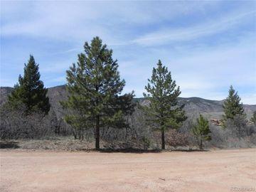 6388 Torrey Pines Drive, Larkspur, CO, 80118,