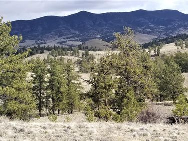 Coyote Drive, Guffey, CO, 80820,