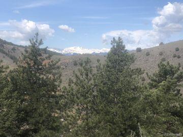 0 S Mt Evans Lane, Idledale, CO, 80453,