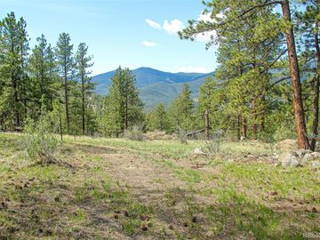 133 Parkview Court, Bailey, CO, 80421,