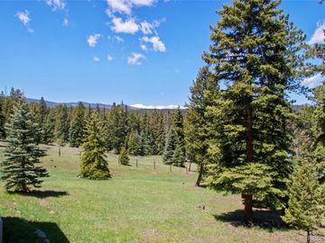 Heartease Way, Evergreen, CO, 80439,