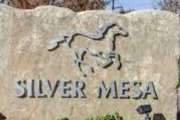 6420 Silver Mesa Drive #C