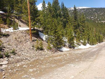 000 Hilltop Road, Idaho Springs, CO, 80452,