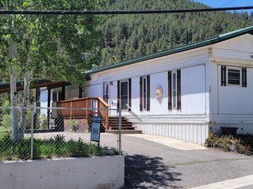 427 Idaho Street, Idaho Springs, CO, 80452,