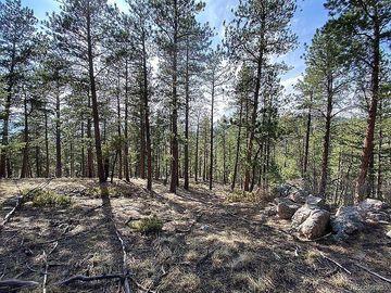 135 Linda Trail, Bailey, CO, 80421,
