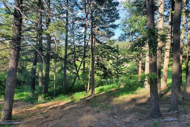 8222 Stags Leap Trail