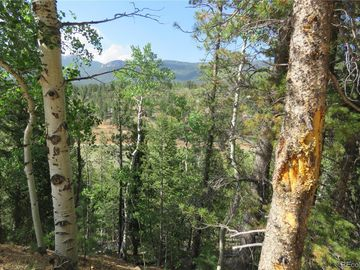 413 Wise Road, Bailey, CO, 80421,