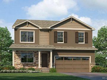 4825 Fiadore Lane, Castle Rock, CO, 80104,
