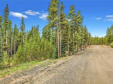 Lot 171 Lower Forest Road, Idaho Springs, CO, 80452,