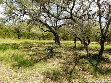 687 LAKEWOOD DR, Lakehills, TX, 78063,