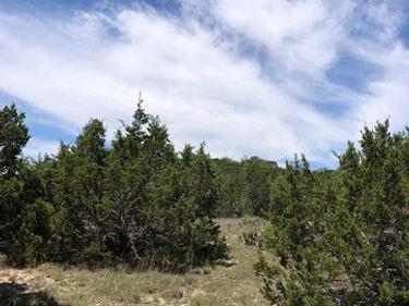 1816 Shepherds Ranch, Bulverde, TX, 78163,