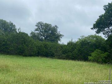 165 Private Road 1741, Mico, TX, 78056,