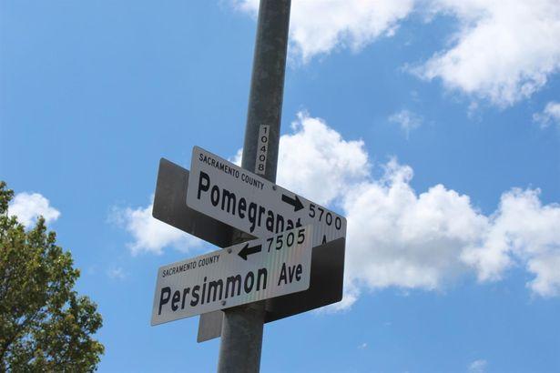 7509 Persimmon Avenue