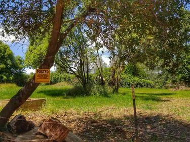 4617 Pedro Hill Road, Pilot Hill, CA, 95664,